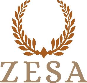 Logo der Agentur ZESA aus Königstein
